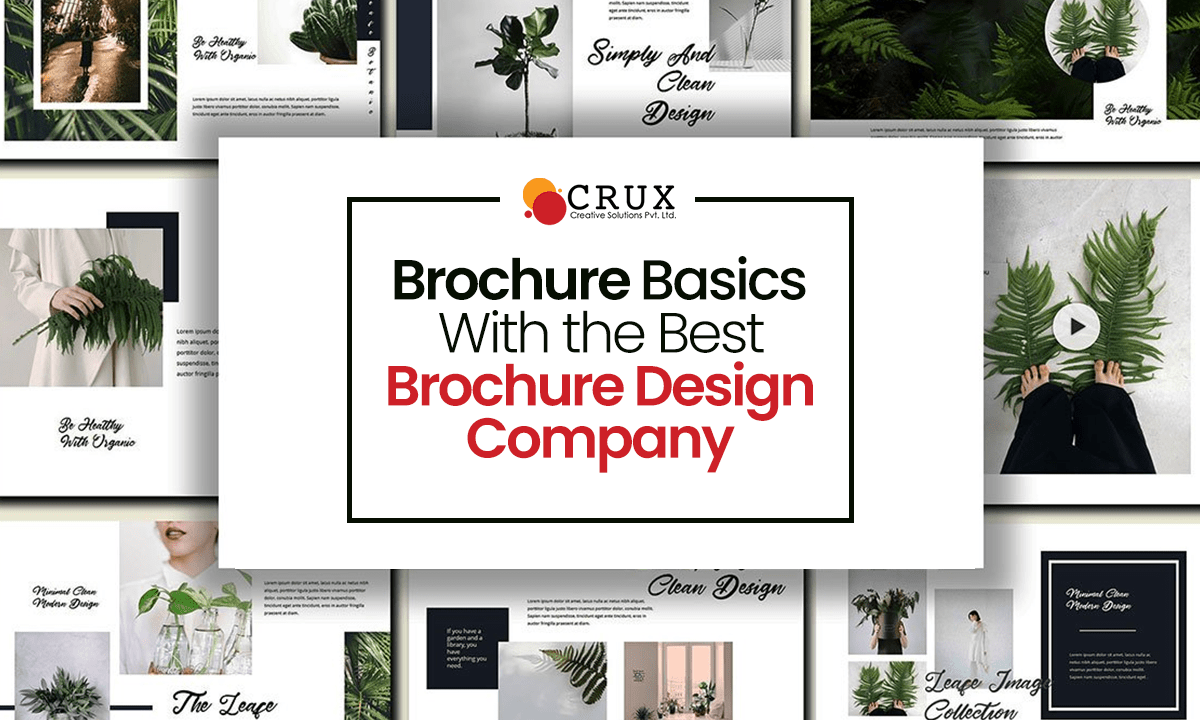 Brochure Basics With the Best Brochure Design Company - Crux Creative Solutions